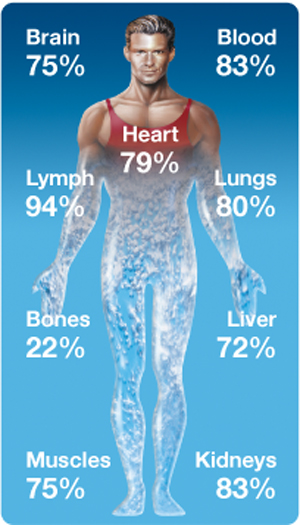 Body made of 70% water