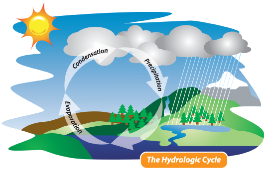 Hydrologic water cycle